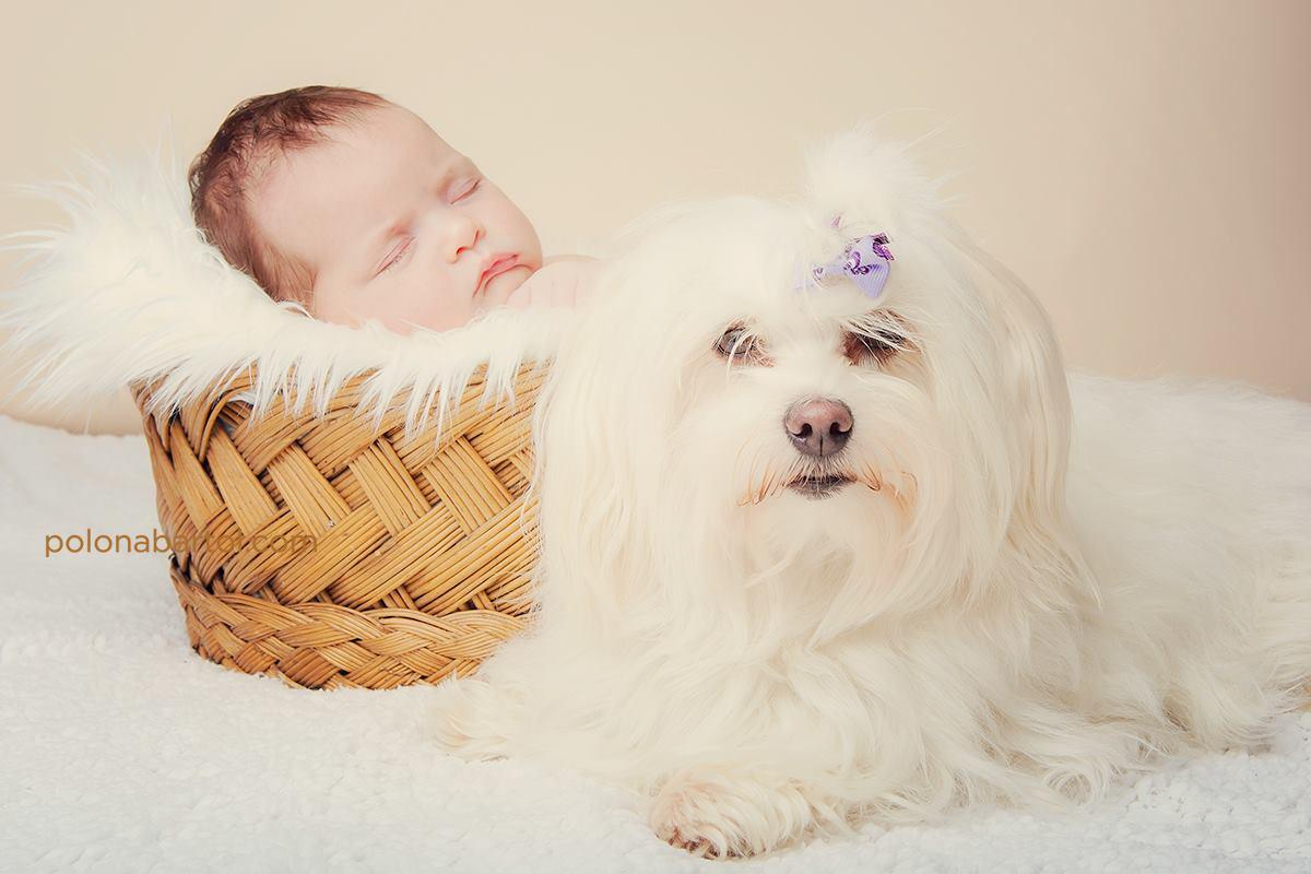 novorojencek