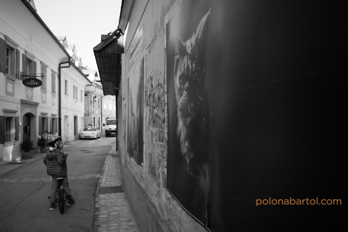 fotografiranje-druzin05