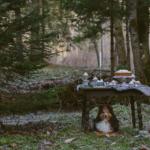 Kratka zimska kulinarična pravljica / Short winter culinary fairytale